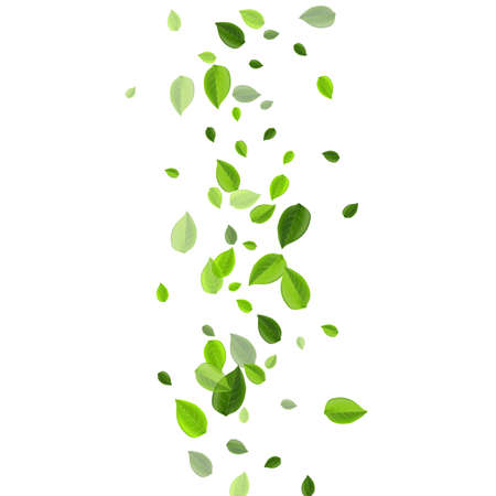 Mint Leaf Realistic Vector Backdrop. Motion Foliage Wallpaper. Grassy Greens Blur Design. Leaves Nature Pattern.