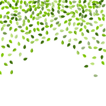 Lime Greens Tree Vector Illustration. Realistic Foliage Poster. Green Leaf Swirl Plant. Leaves Organic Branch.