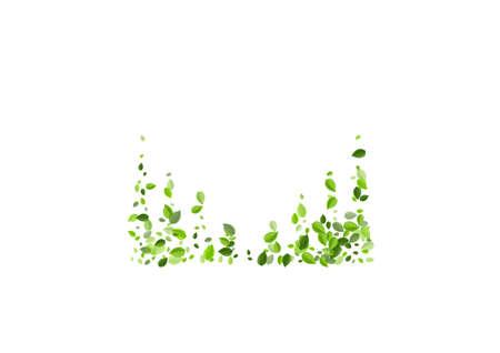 Mint Greens Blur Vector Background. Spring Leaf Brochure. Green Foliage Nature Branch. Leaves Flying Concept. Ilustração