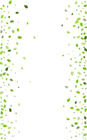 Lime Greens Herbal Vector Poster. Fresh Foliage Concept. Swamp Leaf Wind Background. Leaves Motion Branch.