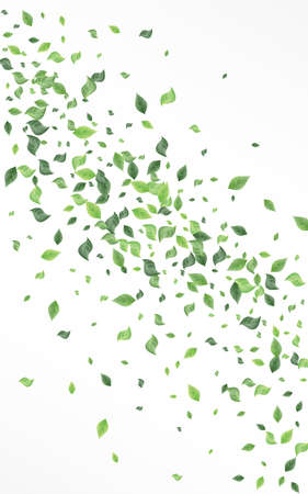 Grassy Greenery Forest White And Gray Background Backdrop. Abstract Leaf Branch. Green Foliage Spring Illustration. Leaves Tree Pattern. Zdjęcie Seryjne