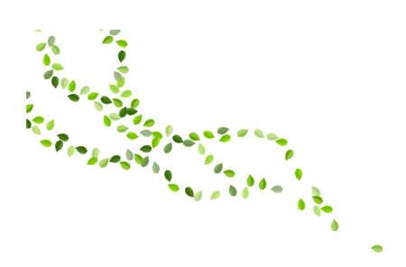 Olive Leaf Falling Vector Banner. Forest Leaves Design. Forest Foliage Motion Branch. Greens Ecology Background. Zdjęcie Seryjne - 157576830