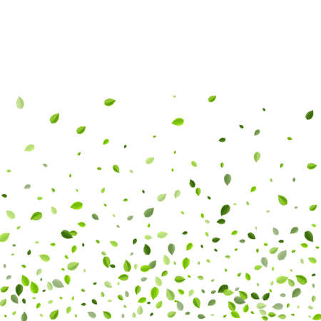 Lime Leaf Realistic Vector Branch. Swirl Leaves Pattern. Swamp Greens Abstract Template. Foliage Organic Backdrop.