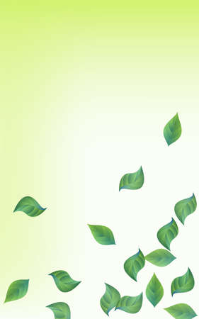 Green Leaf Fresh Vector Green Background Design. Tree Greenery Wallpaper. Swamp Leaves Swirl Border. Foliage Organic Brochure.
