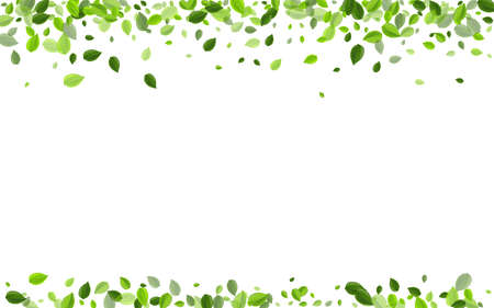 Swamp Foliage Flying Vector Plant. Wind Greens Banner. Green Leaf Tree Concept. Leaves Tea Background.