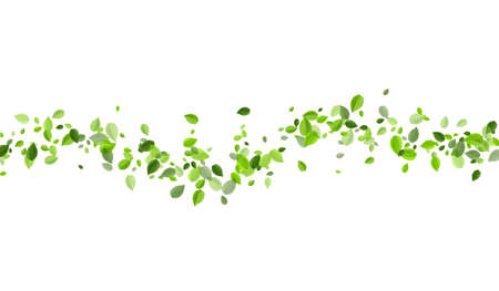 Swamp Leaf Fresh Vector Wallpaper. Swirl Greens Banner. Lime Leaves Spring Background. Foliage Nature Plant.