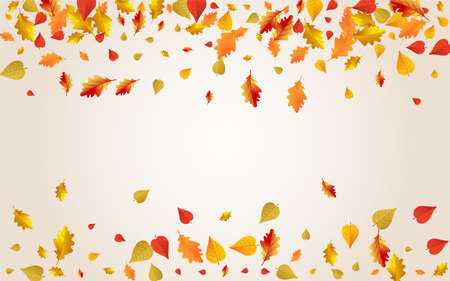 Orange Floral Vector Transparent Background. November Leaves Illustration. Yellow Flying Plant Texture. Collection Template.