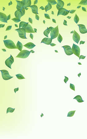 Forest Leaves Fly Vector Green Background Backdrop. Ecology Leaf Concept. Lime Foliage Blur Design. Greenery Forest Brochure.