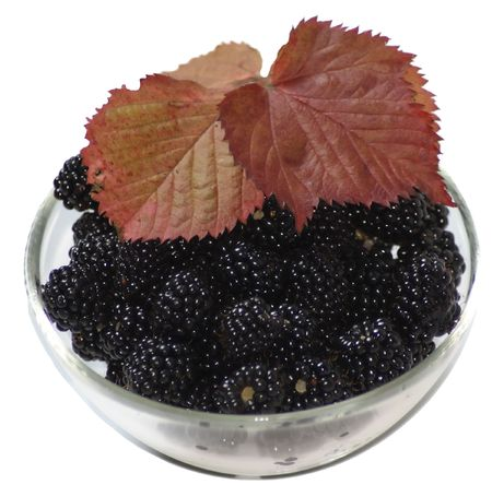 bowl with blackberries and red leafs Stock Photo