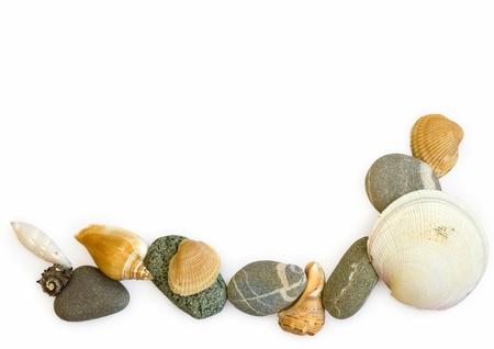 sea stones and seashells on white background  Stock Photo