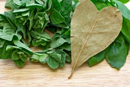 heart shaped bay leaf