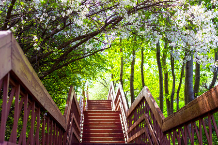 Stairway into Spring