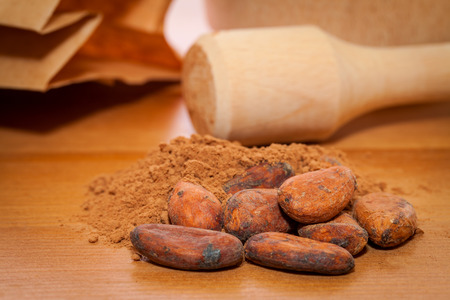 cocoa beans and cocoa powder on the table