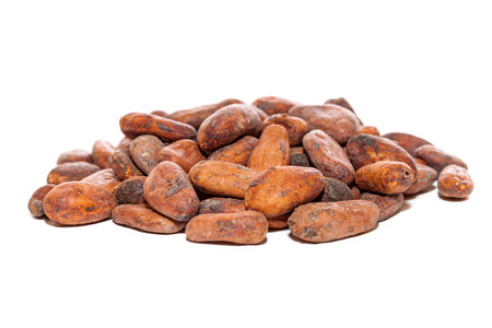 cocoa beans isolated Stock Photo