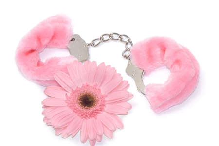 Gerbera flower and pink hand cuffs isolated over white background