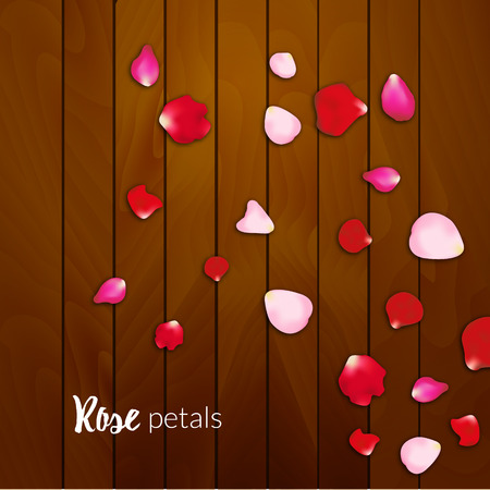 rose petals: Realistic rose petals on wooden background, Valentines day card. Love background.