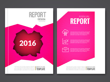 sample environment: Cover Report Business Pink Red Hole Geometric pattern Design Background, Magazine Cover, Brochure Book Cover Template with icons and infographics, vector illustration.
