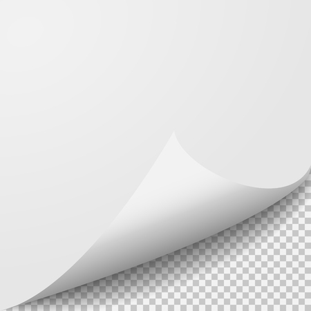 curl: Curl corner paper template. Transparent grid. Empty isolated background page.