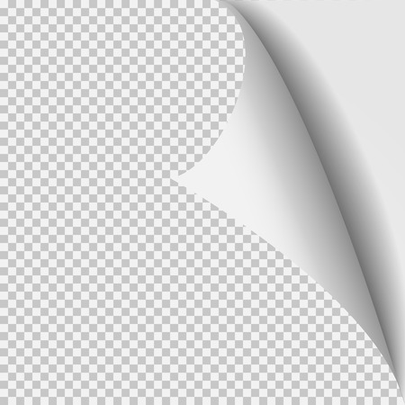 turns: Curl corner paper template. Transparent grid. Empty isolated background page.