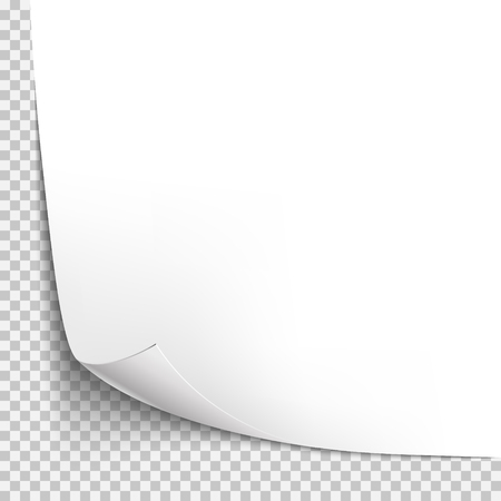 peel off: Curl corner paper template. Transparent grid. Empty isolated background page.