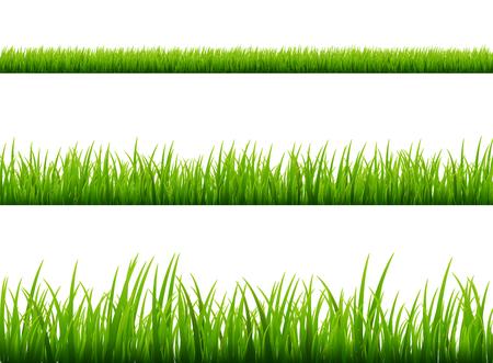 Groen gras weide grens vector patroon. Lente of zomer plant veld gazon. Gras achtergrond. Stock Illustratie