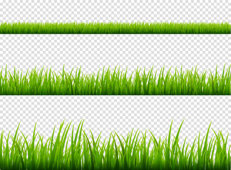 Green grass meadow border vector pattern. Spring or summer plant field lawn. Grass background. Stock Illustratie