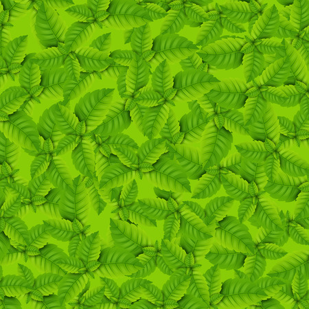 Mint pattern with different bright green mint leaves.