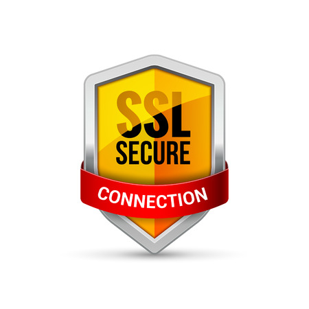 SSL Protection shield guard icon. Security ssl protect sign symbol.  イラスト・ベクター素材
