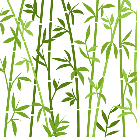 Bamboo background japanese asian plant wallpaper grass. Bamboo tree vector pattern.