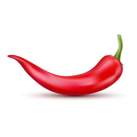 Fresh red hot chili pepper. Kitchen organic vector spicy taste chili mexican pepper. Illustration