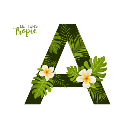 Exotic Tropical Alphabet letter A. Floral font letter with palm. Summer text typography creative design A.