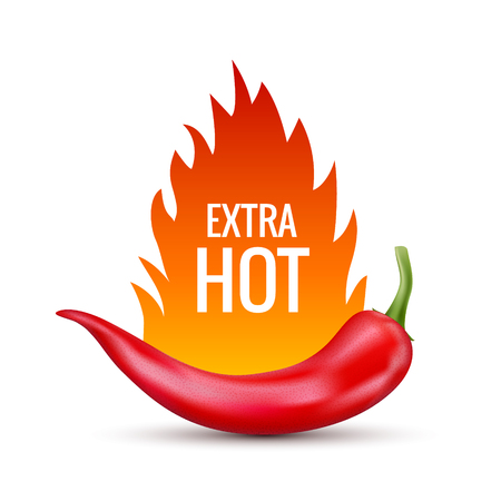 Fresh red hot chili pepper. Kitchen organic vector spicy taste chili mexican pepper with flame fire. Ilustração