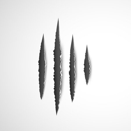 Claws paw scratches isolated vector on white background. Animal Claws horror scratch tiger, lion or bear. Illustration