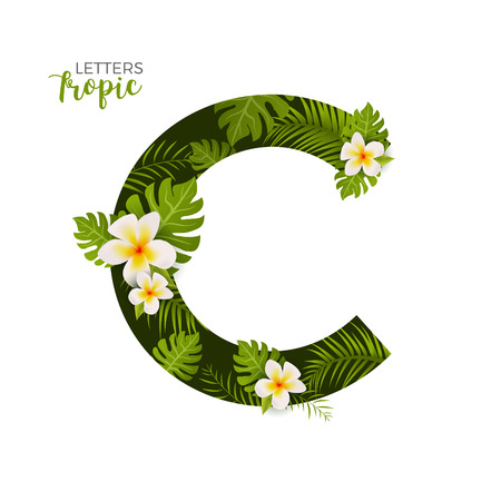 Exotic Tropical Alphabet letter C. Floral font letter with palm. Summer text typography creative design C. Vectores