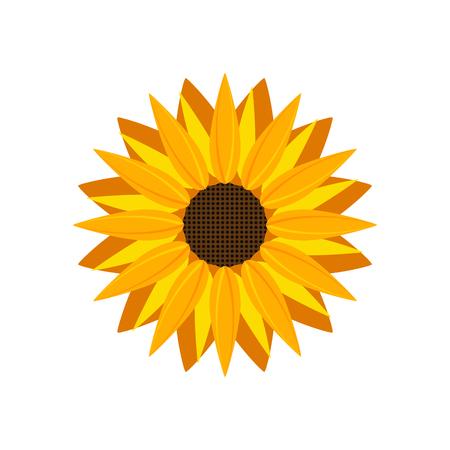 Vector icono de girasol aislado. Ejemplo amarillo de la flor de la naturaleza de la flor del girasol para el verano.