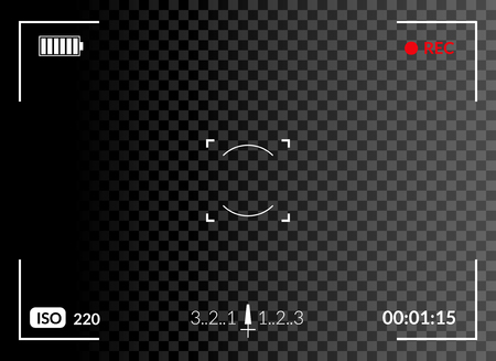 Camera viewfinder with digital focus and exposure camera settings. Screen photography frame.