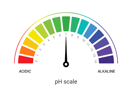 pH scale indicator chart diagram acidic alkaline measure. pH analysis vector chemical scale value test. Stok Fotoğraf - 125697143
