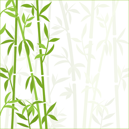 Bamboo background japanese asian plant wallpaper grass. Bamboo tree vector pattern. Stock Vector - 117528506