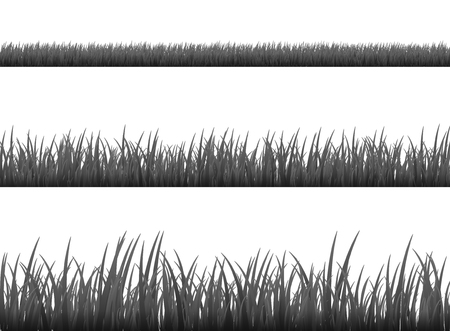 Grass meadow border vector pattern. Spring or summer plant field lawn. Black and white grass background.