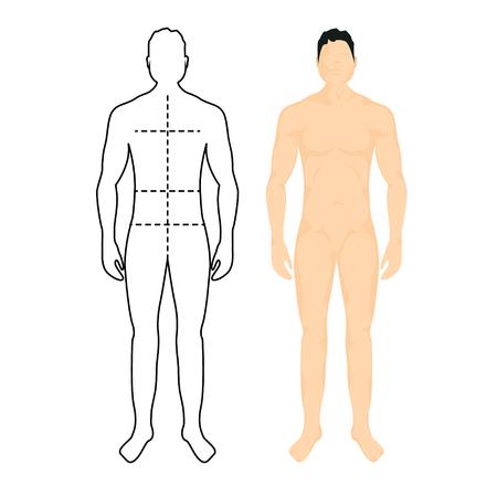 Man anatomy silhouette size. Human body full measure male figure waist, chest chart template Vetores