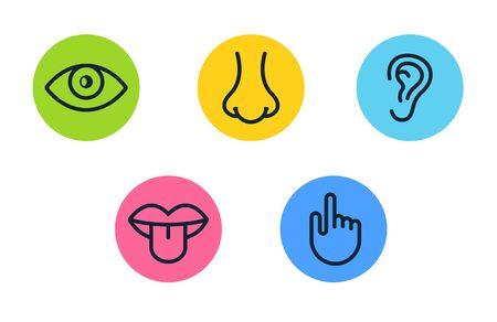 Ojo de visión de cinco sentidos humanos, olfato de nariz, oído de oído, mano táctil, boca de sabor y lengua. Conjunto de iconos de vector de línea.