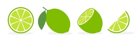 Vector lime slice green illustration lemon isolated half fruit lime. Fresh green cut citrus icon