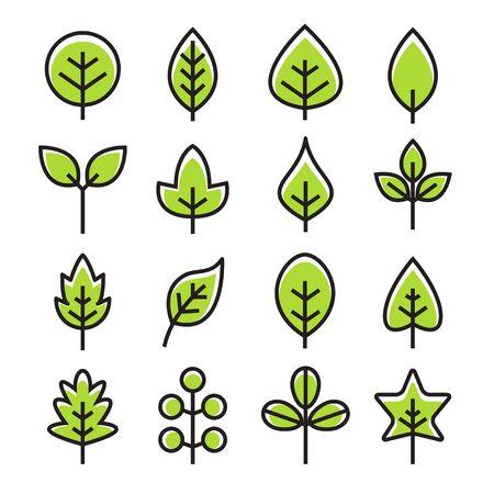 Leaf vector design line icon. Green line leaf plant outline symbol nature Иллюстрация
