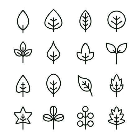 Leaf vector design line icon. Green line leaf plant outline symbol nature  イラスト・ベクター素材