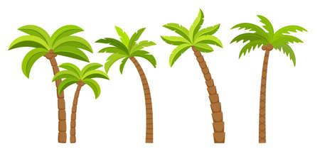 Palm tree vector island coconut cartoon icon. Palmtree island desert isolated tropical icon Illustration