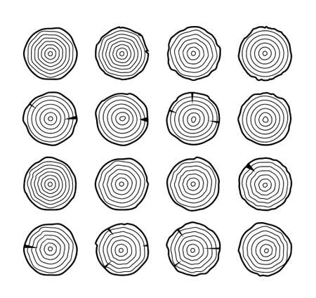 Tree growth rings wood trunk vector annual organic stump. Tree circle icon design