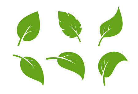 Leaf vector icon . Vegan leaves green eco flat herbal icon simple shape