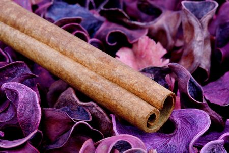 Cinnamon stick and other spices