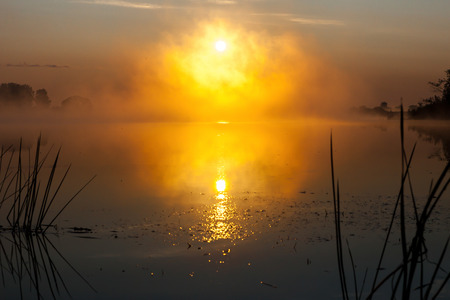 Dawn on the river in the Russian sun in the fog