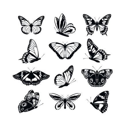 Set butterflies collection spring and summer black silhouettes on white background. Icons different shapes wings, for illustration, ornaments, tattoo, decorative design elements. Vector illustration Ilustração